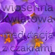 Wiosenna Kwiatowa Medytacja z Czakrami